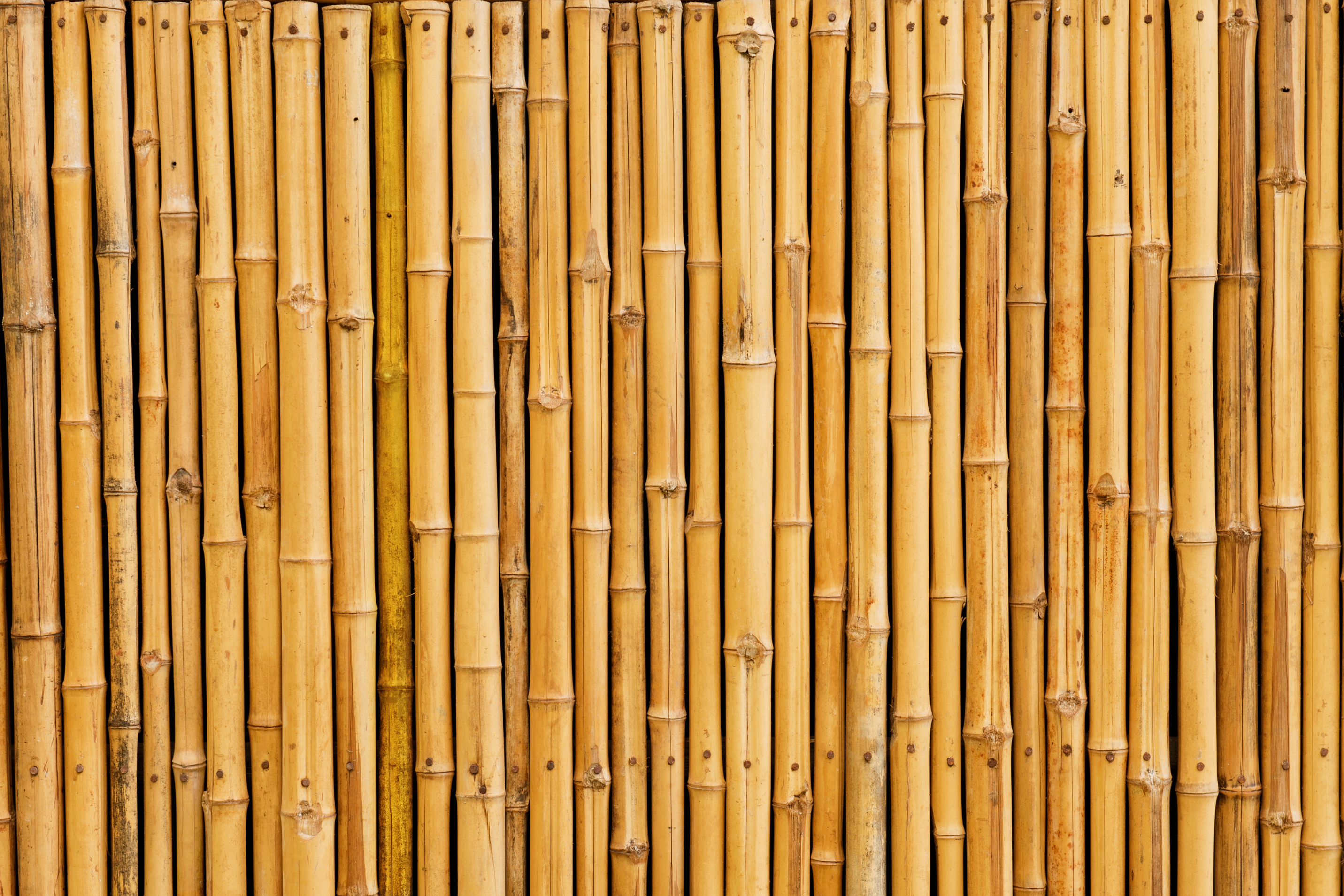 Multi Use Bamboo Surface Protector Sorbco Llc