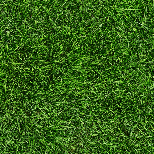 Multi Use Real Grass Surface Protector Sorbco